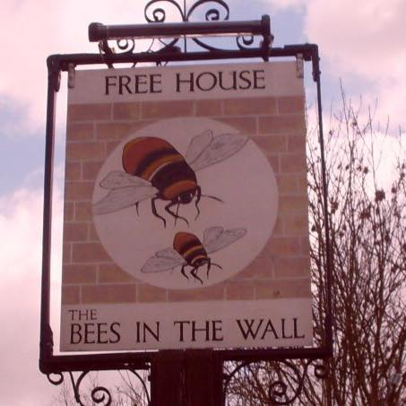 bees-in-the-wall-thumbnail