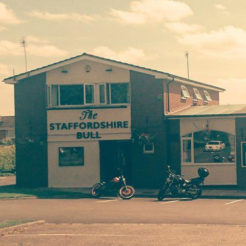 the-staffordshire-bull-thumbnail