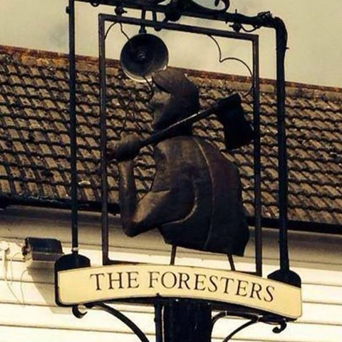 the-foresters-thumbnail
