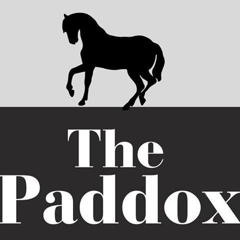 the-paddox-thumbnail