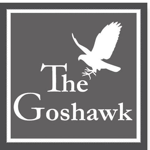 the-goshawk-thumbnail