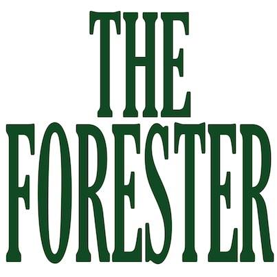 the-forester-thumbnail