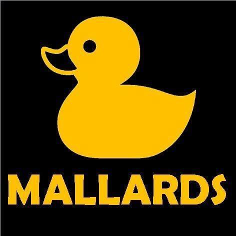 mallards-thumbnail