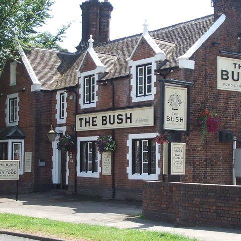 the-bush-thumbnail