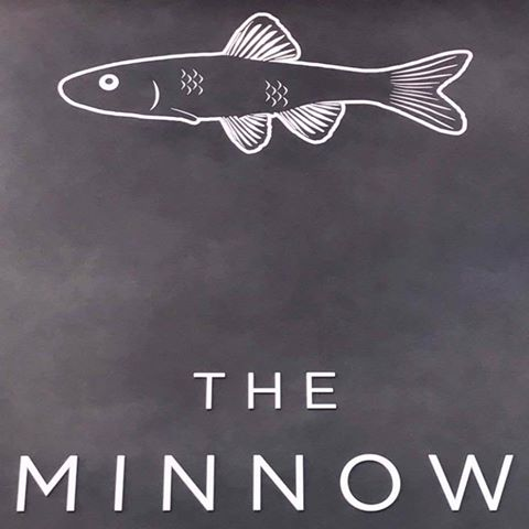 the-minnow-thumbnail