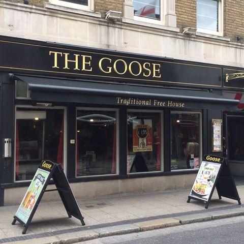 the-goose-thumbnail