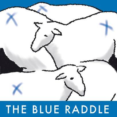 the-blue-raddle-thumbnail