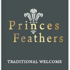 the-princes-feathers-thumbnail