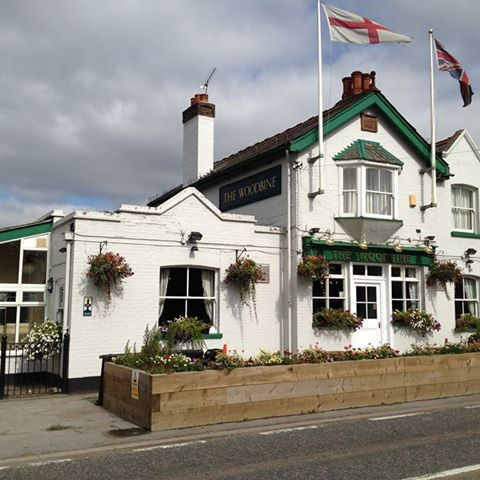 the-woodbine-thumbnail
