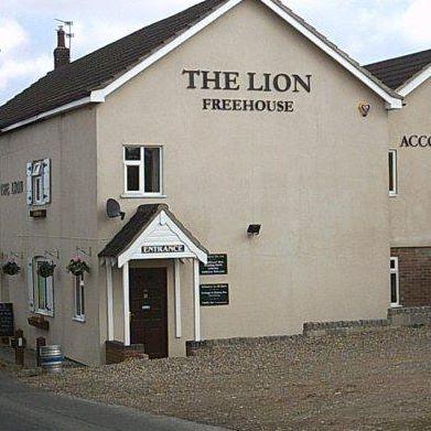the-lion-thumbnail
