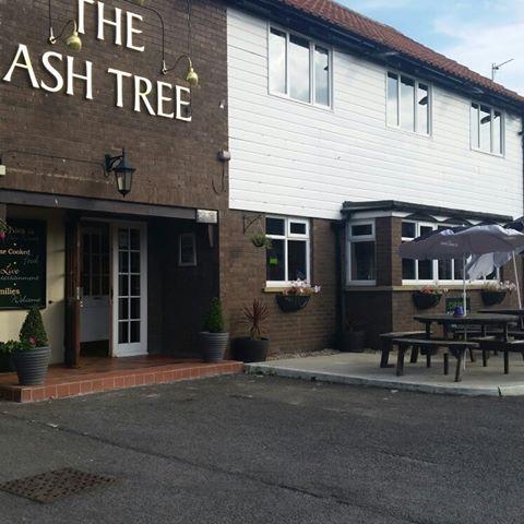 the-ash-tree-thumbnail