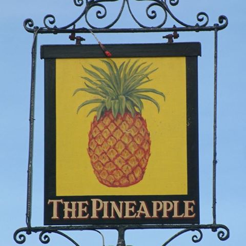 the-pineapple-thumbnail