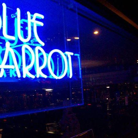 blue-parrot-thumbnail