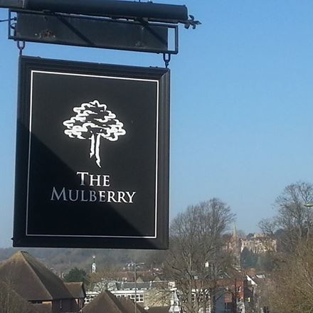 the-mulberry-thumbnail