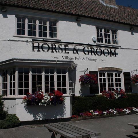 horse-groom-thumbnail