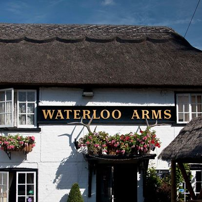 waterloo-arms-thumbnail