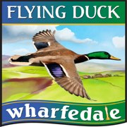 the-flying-duck-thumbnail