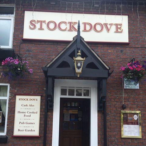 stock-dove-thumbnail