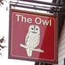 the-owl-thumbnail