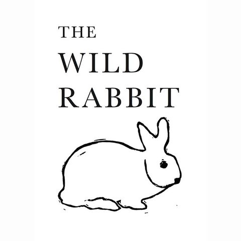 the-wild-rabbit-thumbnail