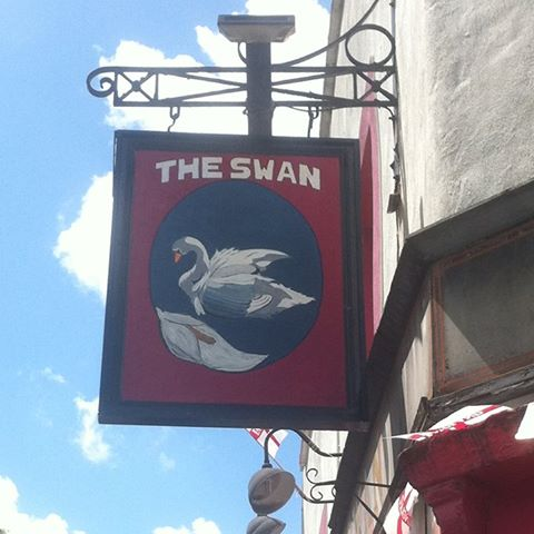 the-swan-thumbnail