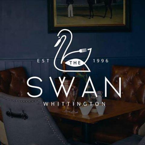the-swan-thumbnail