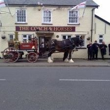the-coach-horses-thumbnail