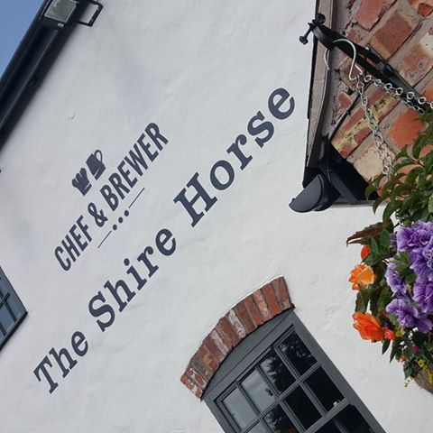 shire-horse-thumbnail