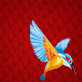 kingfisher-thumbnail