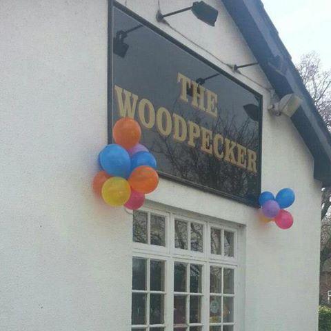 the-woodpecker-thumbnail