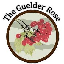 guelder-rose-thumbnail
