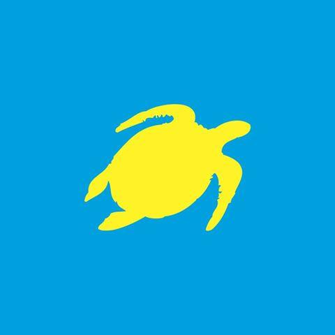 turtle-bay-thumbnail