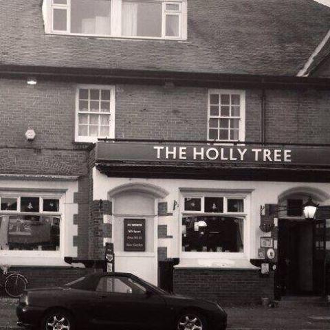 the-holly-tree-thumbnail