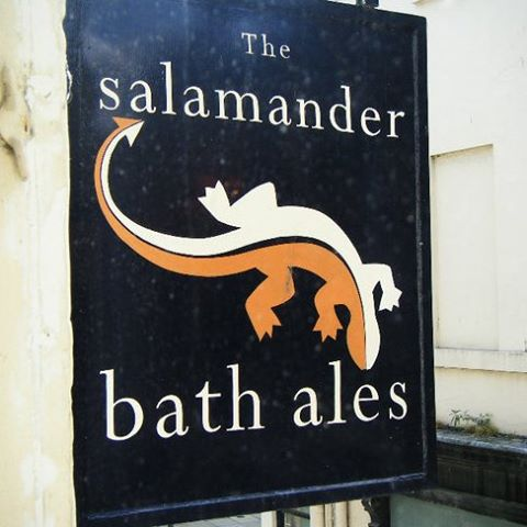 the-salamander-thumbnail