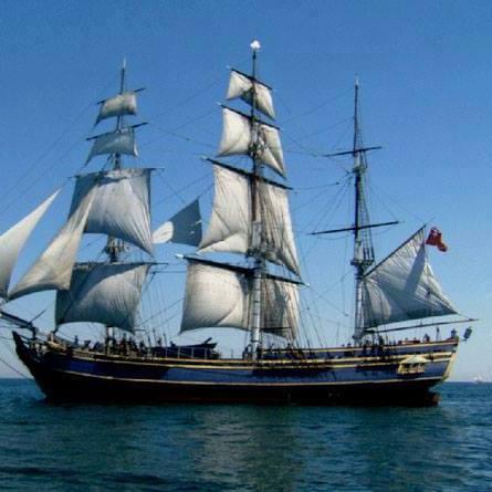the-ship-albion-thumbnail