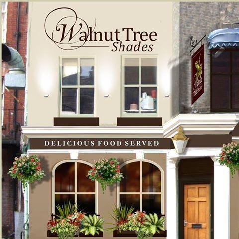 the-walnut-tree-shades-thumbnail