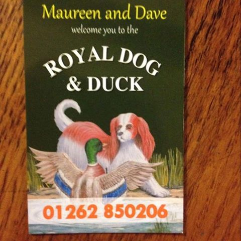 the-royal-dog-duck-thumbnail