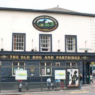 old-dog-partridge-thumbnail
