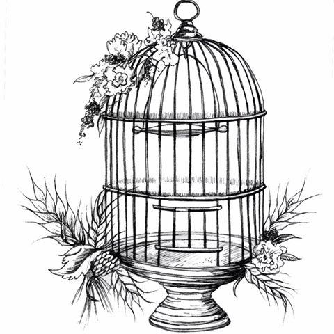 the-birdcage-thumbnail