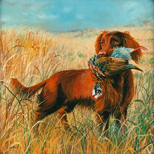 the-dog-partridge-thumbnail